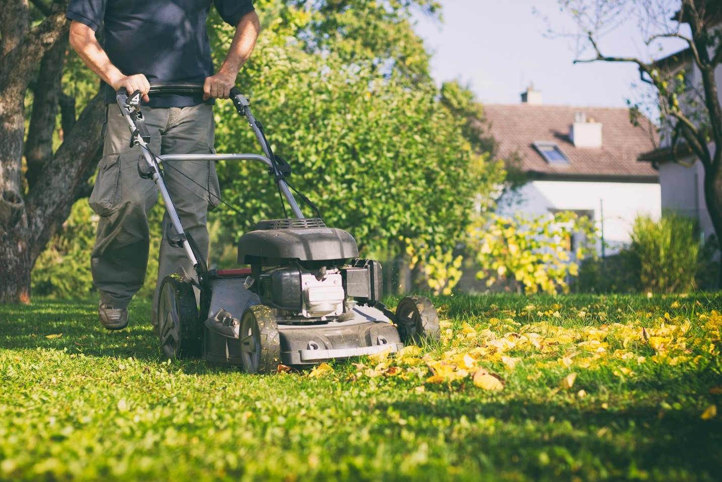 Prepare Your Lawn for the Winter Months