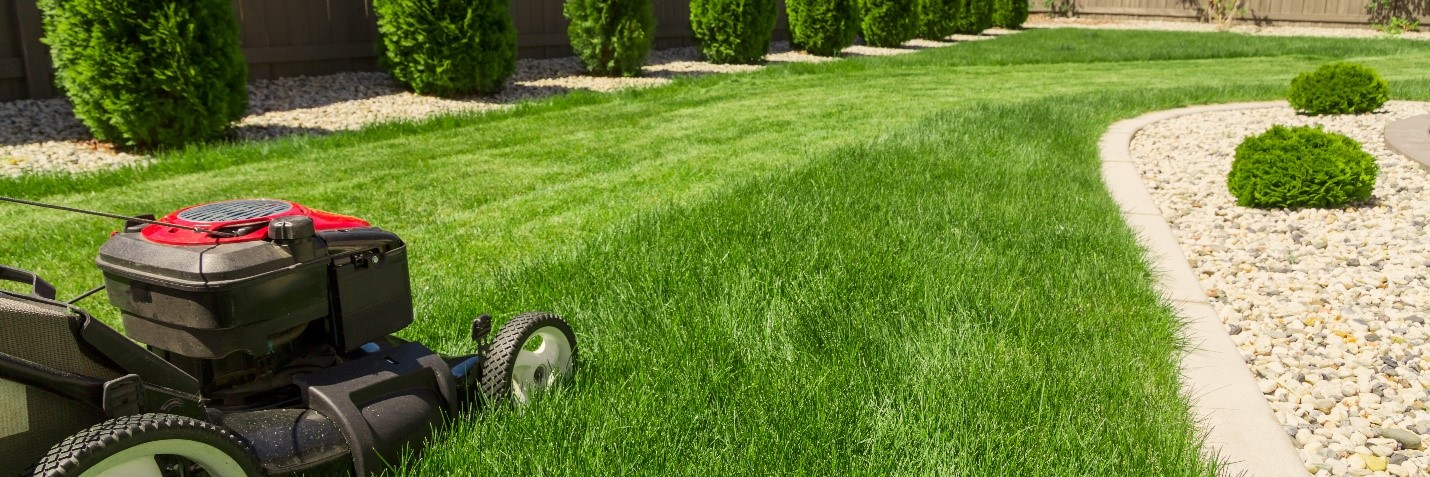 lawn mower cutting a lush green lawn