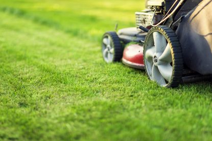 how often should you mow your lawn